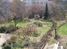 Zahrady_4